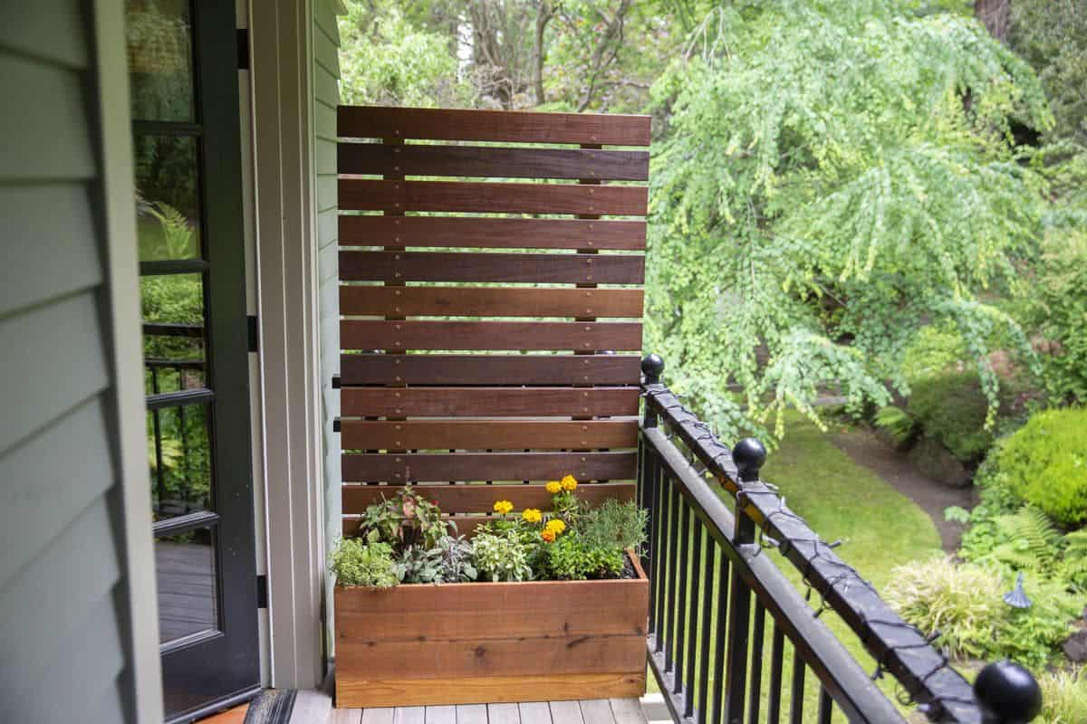 Planter with a Privacy Screen
