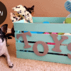DIY Dog Toy Box for Your Dogs: With Popular Ideas and Steps