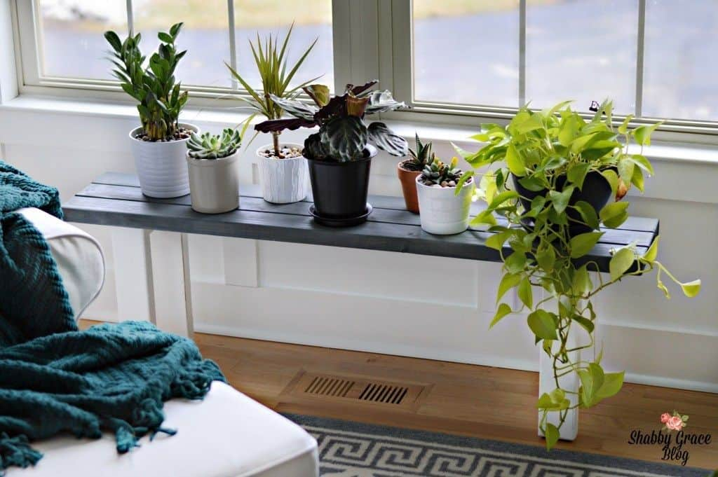 DIY Bench Plant Stand