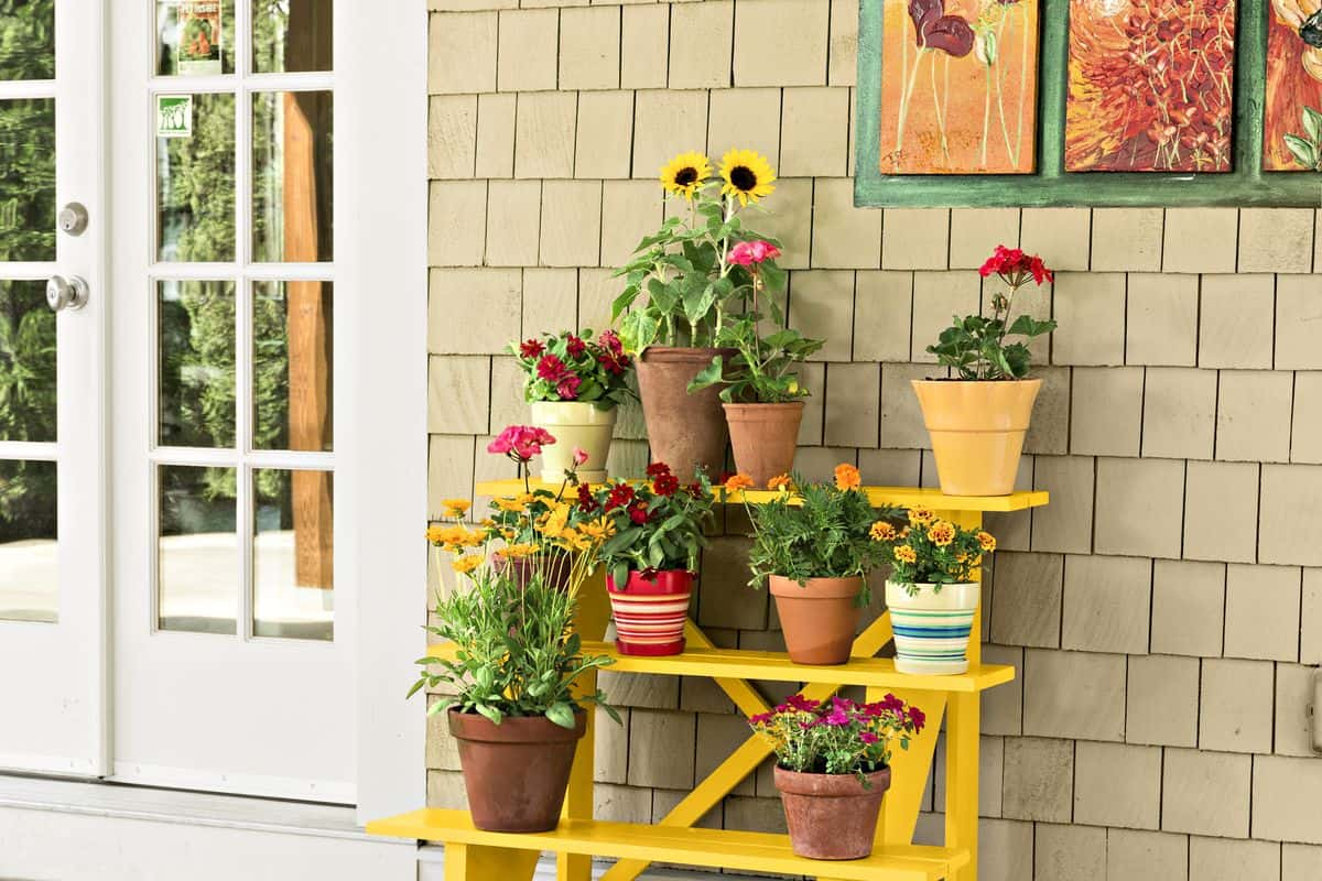DIY Stair-Case Plant Stand