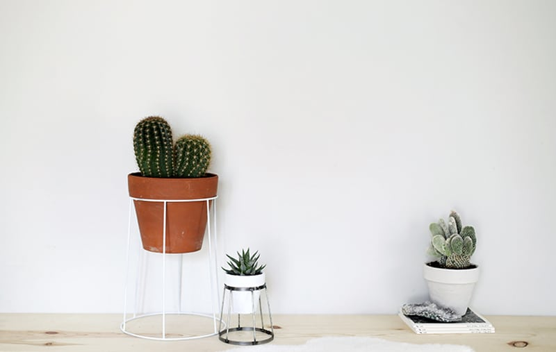 DIY wired Plant Stand