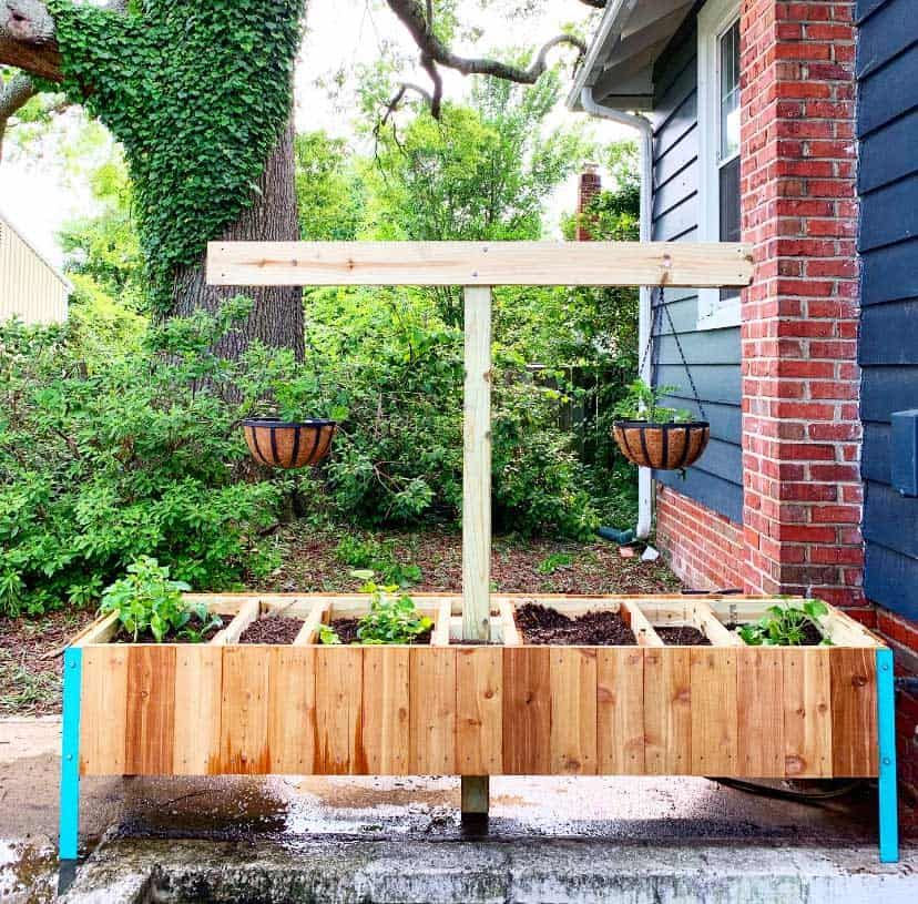 Planter Box with compost Pit